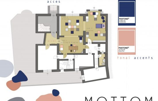 floor plan and color palette_Mottom